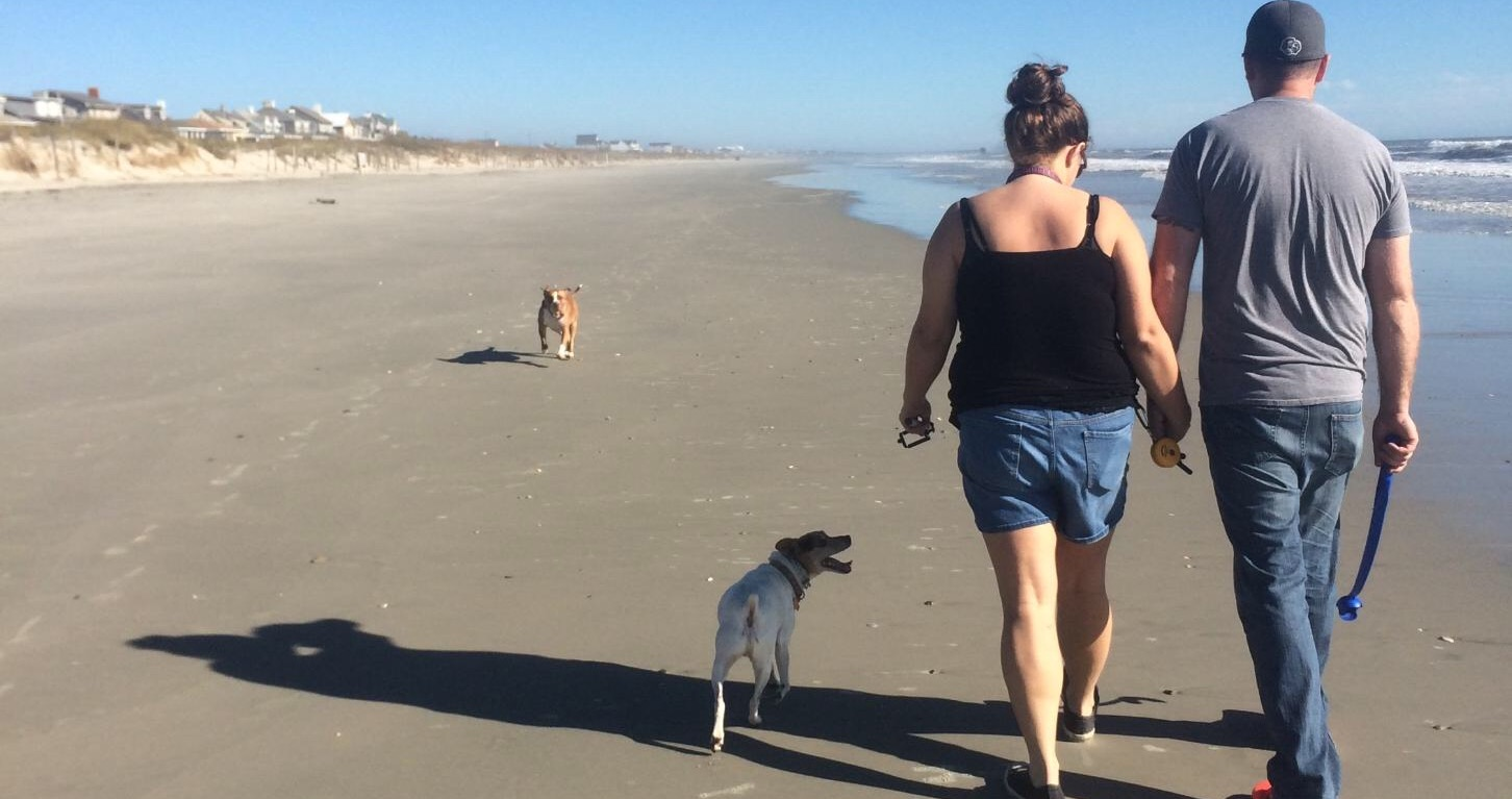 off leash at the beach